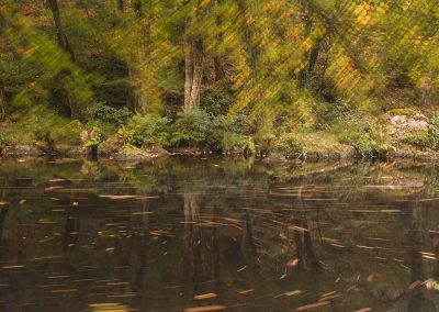 Autumn Rinse (River Teign, Devon)