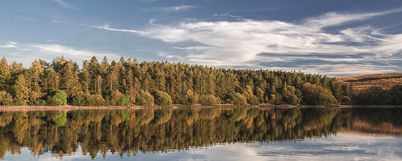 Panoramic image of trees lining the edge of Venford Reservoir during Autumn. Trees are reflected in the calm water.